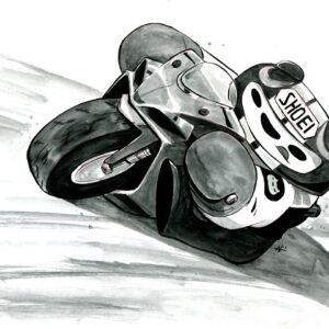 Motorcycle Panda